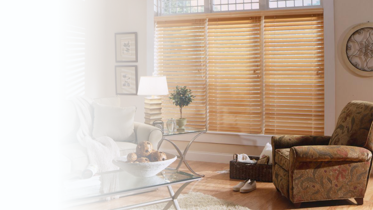 Horizontal Blinds Window Treatments